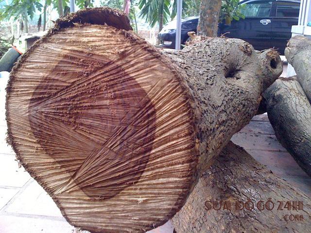 Hình ảnh gỗ huỳnh đàn